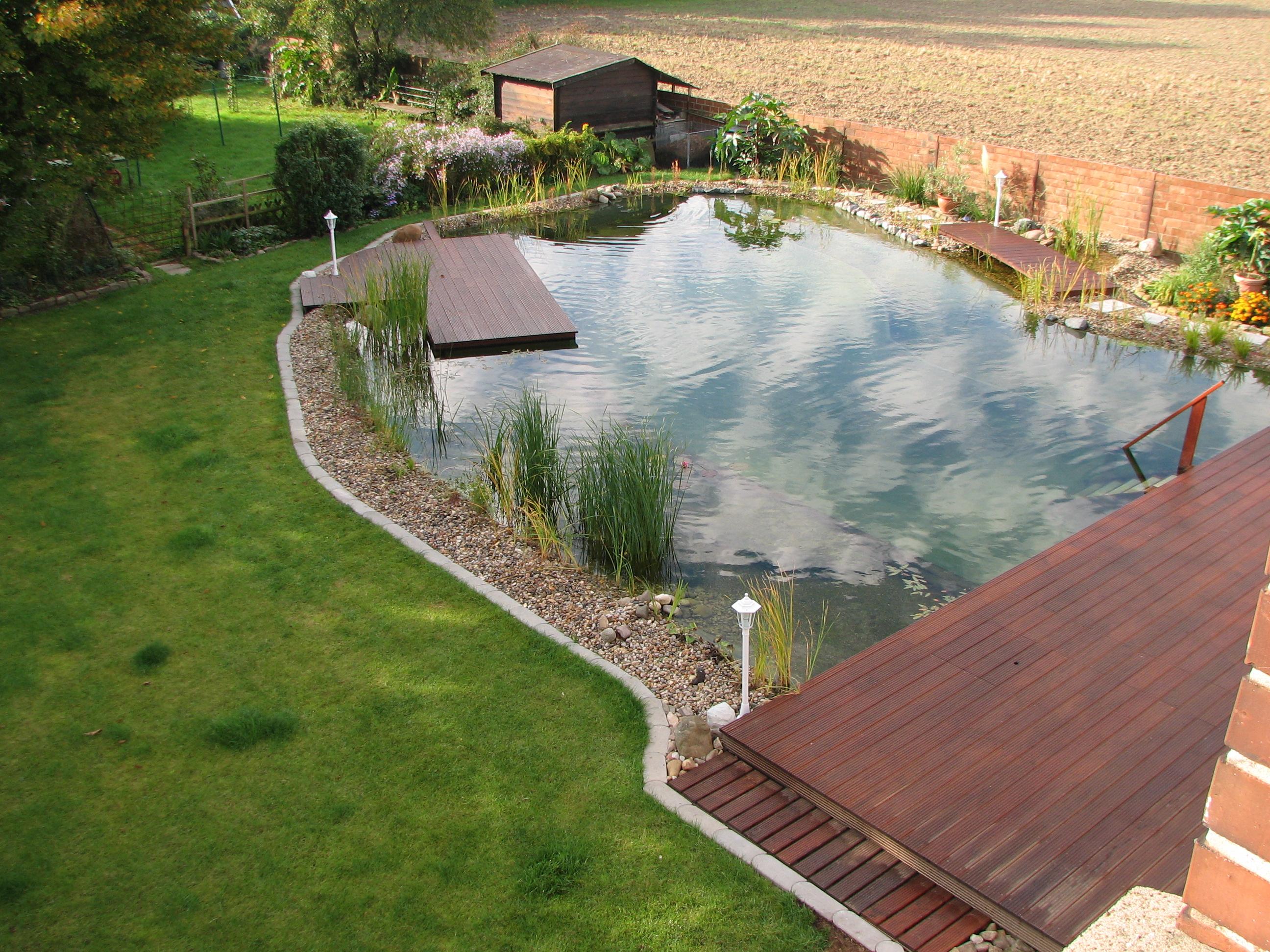 Fotos vom schwimmteich der familie schweda in hoheneggelsen for Teich bilder