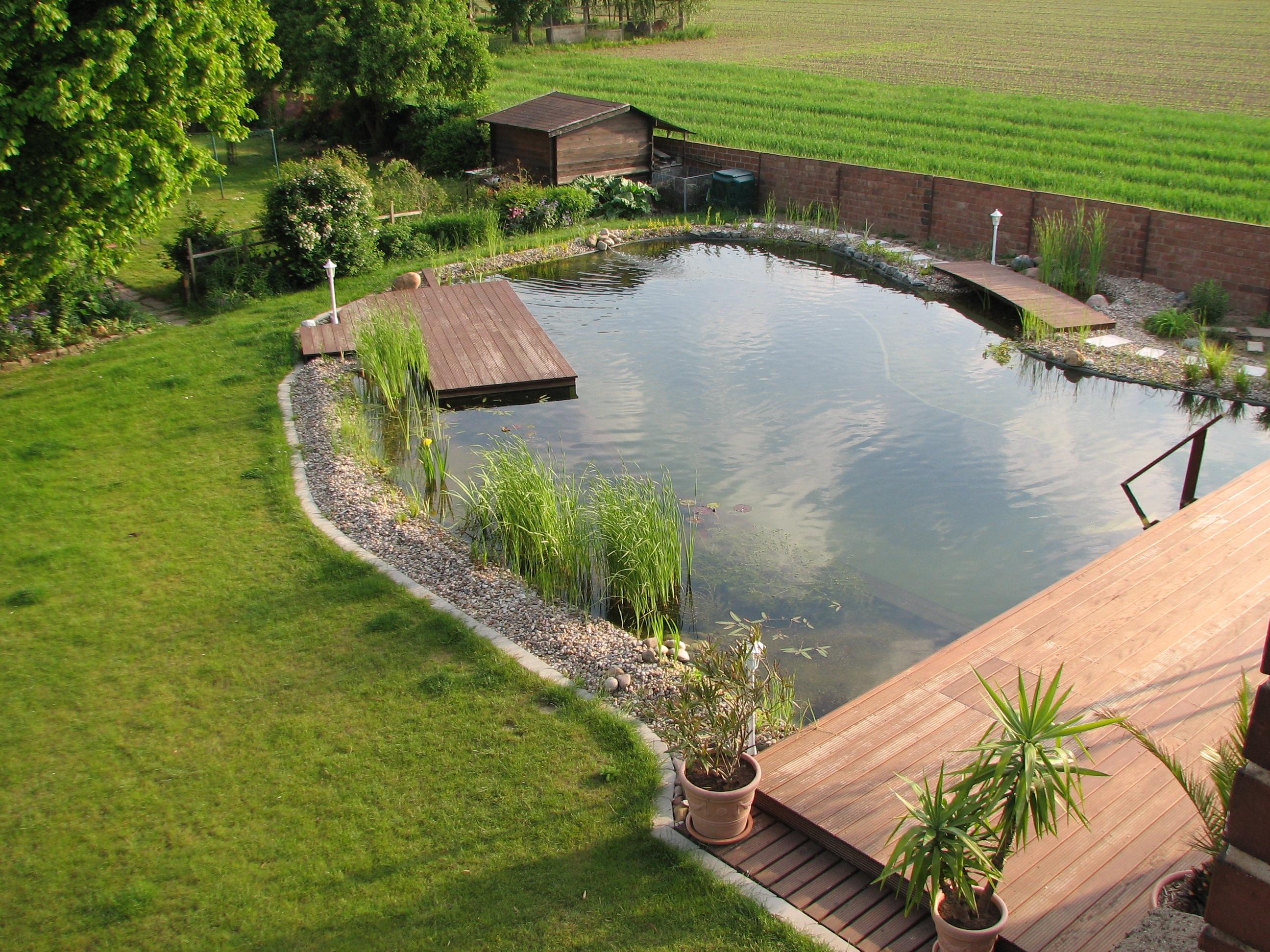 Fotos vom schwimmteich der familie schweda in hoheneggelsen for Garten schwimmteich